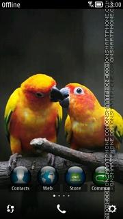Hd Parrots theme screenshot