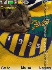 Cat Fan tema screenshot