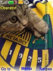 Скриншот темы Cat Fan2