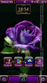 Purple rose es el tema de pantalla