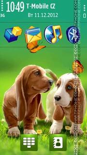 Two Dogs Summer. theme screenshot