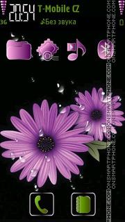 Daisy flowers 01 theme screenshot