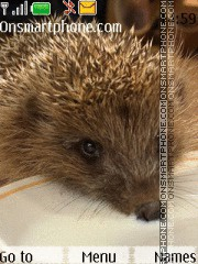 Hedgehog 06 theme screenshot