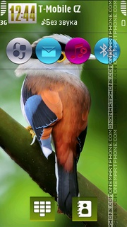 Lovely Bird HD v5 theme screenshot