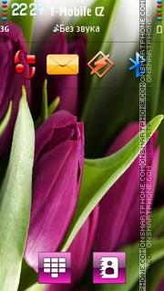 Скриншот темы Purple Tulips HD v5