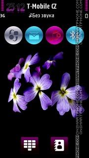 Violet Flowers HD v5 theme screenshot