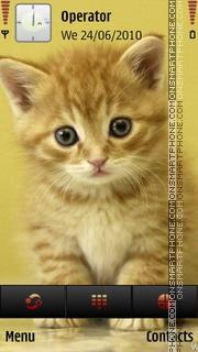 Скриншот темы K-cute-cat