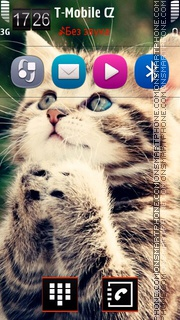 Kitten 14 Theme-Screenshot