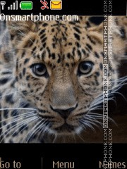 Leopard 04 theme screenshot