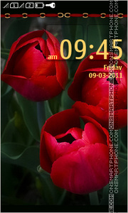 Tulips 11 theme screenshot