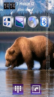 Brown Bear 02 theme screenshot