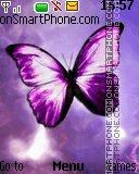 Purple Butterfly tema screenshot
