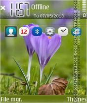 Springtime 03 es el tema de pantalla