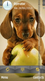 Puppy and Apple theme screenshot