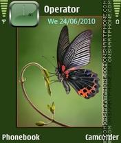 Capture d'écran Fluture2 thème