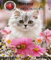 Lovely Kitten es el tema de pantalla