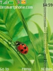 Ladybird theme screenshot