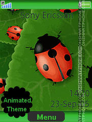 Ladybirds theme screenshot