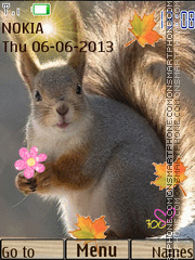 Squirrel theme screenshot