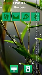 Transparent rain HD es el tema de pantalla