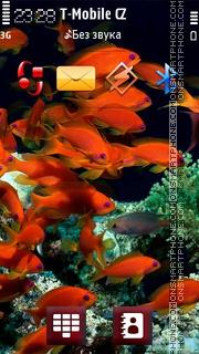 Red Bright Fish theme screenshot
