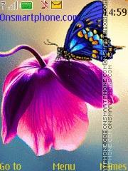 Beautiful butterfly theme screenshot
