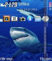 Sharks 03 theme screenshot