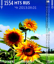 Sunflower Theme-Screenshot