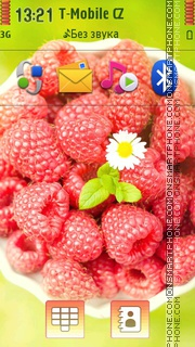 Raspberries And Daisy theme screenshot