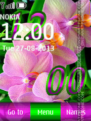 Pink Orchids theme screenshot