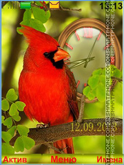 Cardinal bird theme screenshot