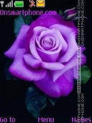 Purple Rose tema screenshot