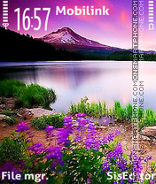Purple nature es el tema de pantalla