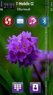 Скриншот темы Vernal HD