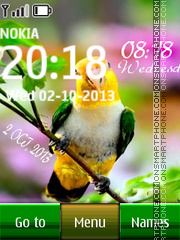 South American Bird Digital Clock theme screenshot