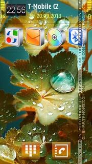 Foliage Drops es el tema de pantalla