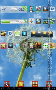 Dandelion Frame theme screenshot