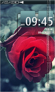 Roses 09 theme screenshot