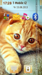 Ginger Cat 02 tema screenshot