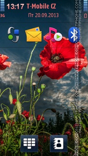 Poppy Field HDR Theme theme screenshot