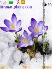 Скриншот темы Spring flowers