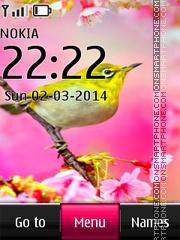 Colorful Bird theme screenshot