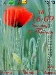Poppies red es el tema de pantalla