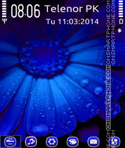 Скриншот темы Blue flower