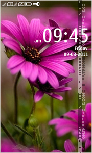 Hd Flowers 01 theme screenshot