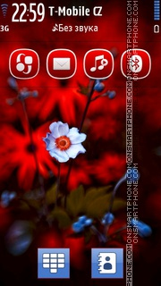 Red Gerbera Flowers theme screenshot