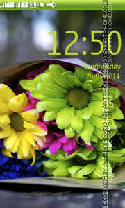 Colorful Daisies theme screenshot