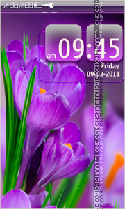 Purple Flowers 05 theme screenshot