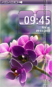 Violet Orchids tema screenshot