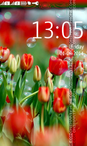Tulips and Bubbles theme screenshot